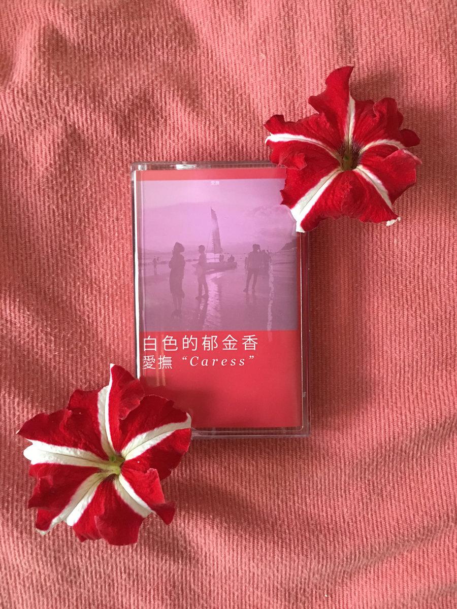 Empty Shell Kamala Tapes