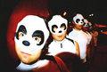 Pixel Panda image