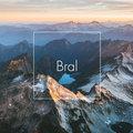 Bral image