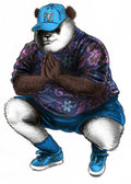 Panda Syndikat image