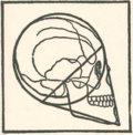 Missing Skull image