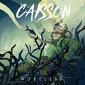 CAISSON image