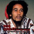 Bob Marley image