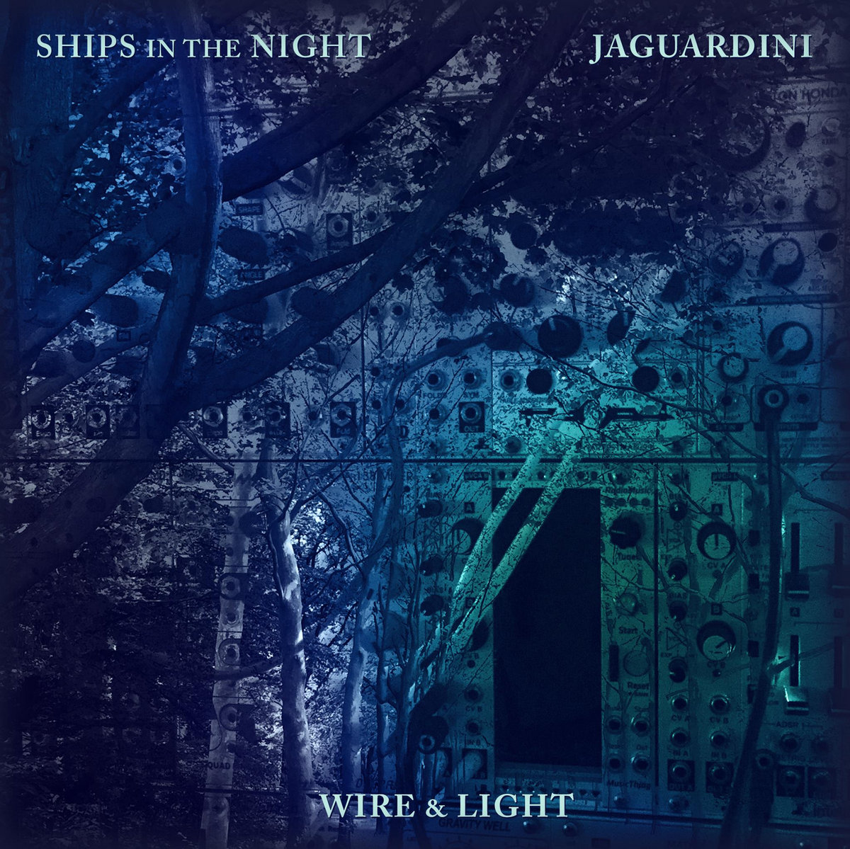 A Split From Ships In The Night And Jaguardini With All Proceeds Supporting Wire Light Summer 2016 Tour Handmade Packaging Limited Edition