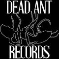 Dead Ant Records image