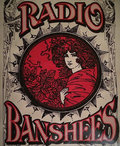 The Radio Banshees image