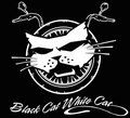 Black Cat White Cat image