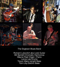 The Dogtown Blues Band image
