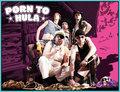 Porn To Hula image