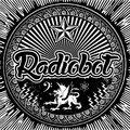 Radiobot image