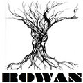 Rowan image