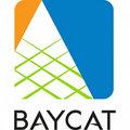 BAYCAT image