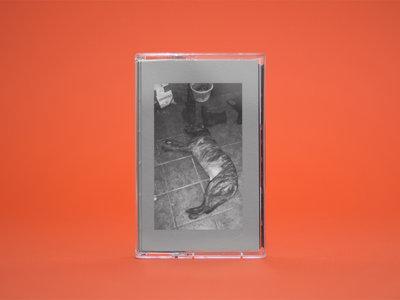 ANM016 Gene Pick — False Restrictive Aspect Cassette main photo