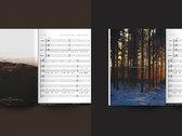 DELIRIUM - The Complete Guitar Transcription photo