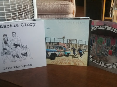 CD Bundle: Shelter + Live the Dream + Who Are Your Friends Gonna Be main photo