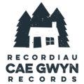 Recordiau Cae Gwyn Records image