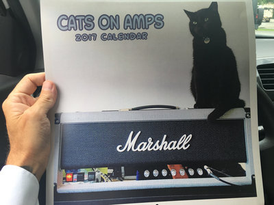 Cats on Amps 2017 Calendar main photo