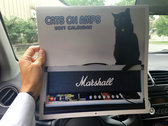 Cats on Amps 2017 Calendar photo