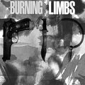 Burning Limbs image