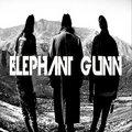 Elephant Gunn image