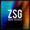 ZSG image