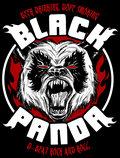 BLACK PANDA image
