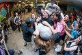 Fist Ov Nails image