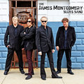The James Montgomery Blues Band image