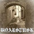 Boarstusk image