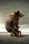 i Like My Trike image