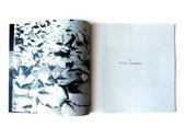 Damrak: A photographic companion to the album photo
