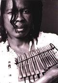 Stella Chiweshe image