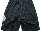 SETE STAR SEPT shorts - Champion photo