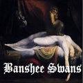 Banshee Swans image