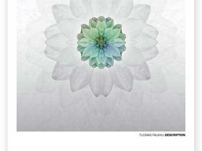 """TUOMAS PAUKKU DESCRIPTION A3 Limited Edition HQ Poster """"Distances"""" main photo"""
