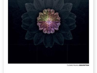 """TUOMAS PAUKKU DESCRIPTION A3 Limited Edition HQ Poster """"Finite"""" main photo"""