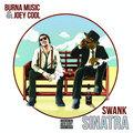 Swank Sinatra image