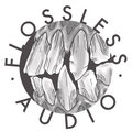 Flossless Audio image