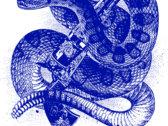 Buffalo Trio - Rattlesnake gun shirt photo