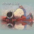 NM Water Is Life image