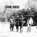 Stone Horse image