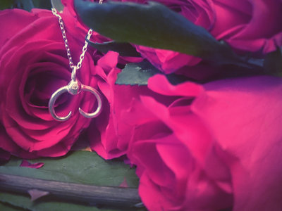 Silver Scarab Pendant *Robyn Chaos Jewellery* main photo