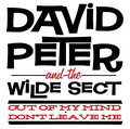 David Peter and the Wilde Sect image