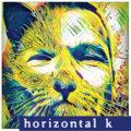 Horizontal K image