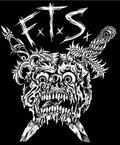 FTS image