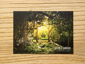 Secret Garden POSTCARD PACK photo