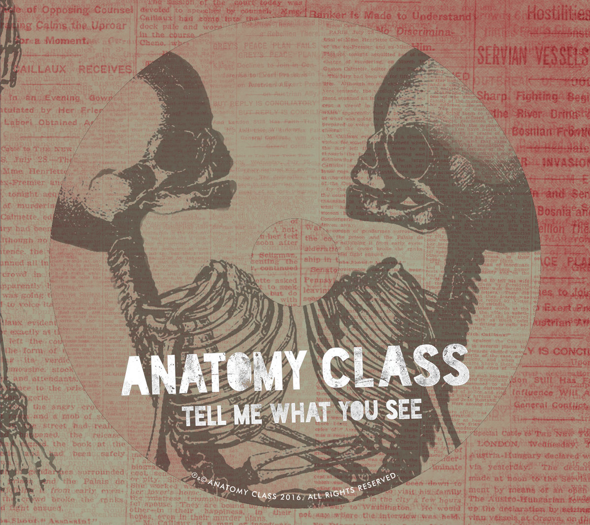 Tell Me What You See | Anatomy Class