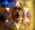 Shining Lion and Black Feet image