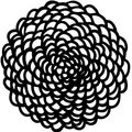 Crisantemo image