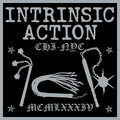 Intrinsic Action image